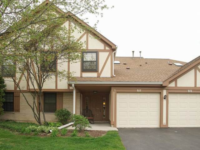 513 Elizabeth Drive 35-D, Wood Dale, IL 60191 (MLS #11242779) :: The Wexler Group at Keller Williams Preferred Realty