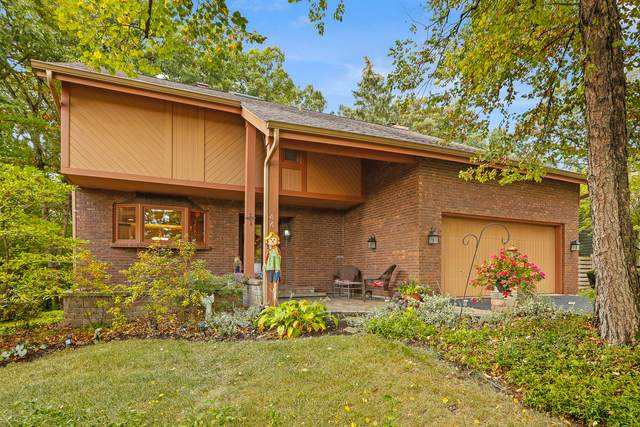 44 W Peiffer Avenue, Lemont, IL 60439 (MLS #11242799) :: John Lyons Real Estate