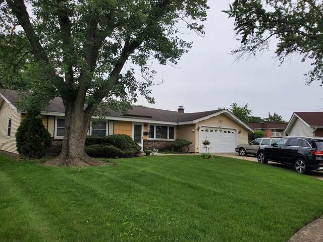 1033 Fairlane Drive, Schaumburg, IL 60193 (MLS #11242802) :: John Lyons Real Estate