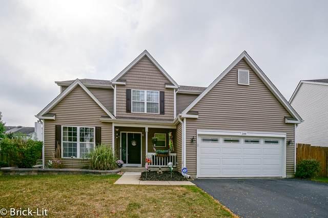 166 Fairfield Drive, Romeoville, IL 60446 (MLS #11243142) :: Littlefield Group