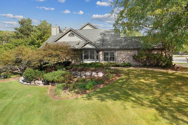 14301 Crystal Tree Drive, Orland Park, IL 60462 (MLS #11243399) :: Littlefield Group