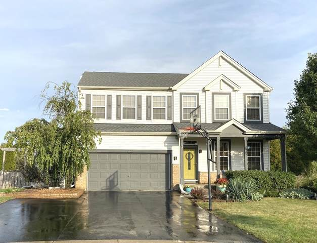 1222 Switchgrass Court, Minooka, IL 60447 (MLS #11243500) :: The Wexler Group at Keller Williams Preferred Realty