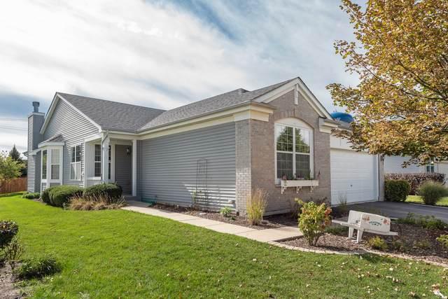 21111 Sterling Lake Court, Crest Hill, IL 60403 (MLS #11243543) :: Ryan Dallas Real Estate