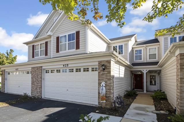 425 Acushnet Street, Elgin, IL 60124 (MLS #11243761) :: Littlefield Group
