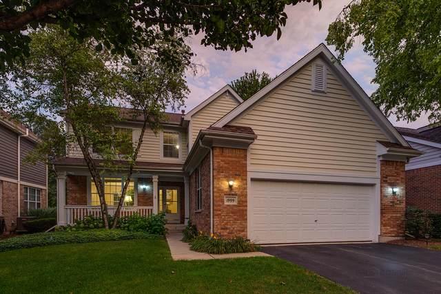 1999 Trevino Terrace, Vernon Hills, IL 60061 (MLS #11244023) :: Littlefield Group