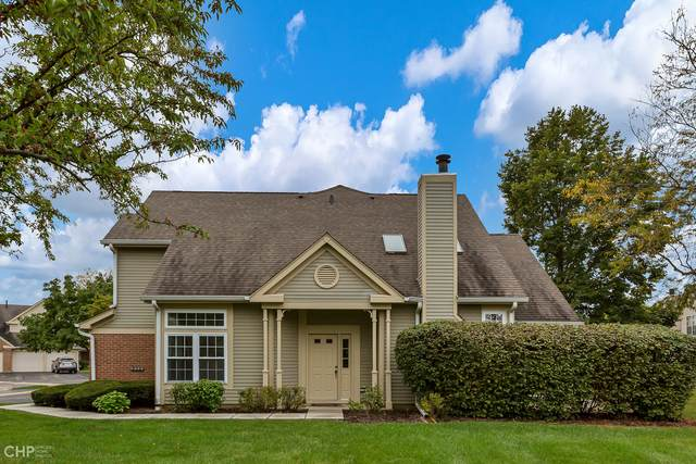 128 N Knollwood Drive, Schaumburg, IL 60194 (MLS #11244162) :: The Wexler Group at Keller Williams Preferred Realty