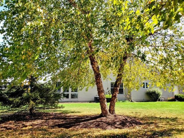 1802A Lydia Court, Urbana, IL 61802 (MLS #11244180) :: John Lyons Real Estate