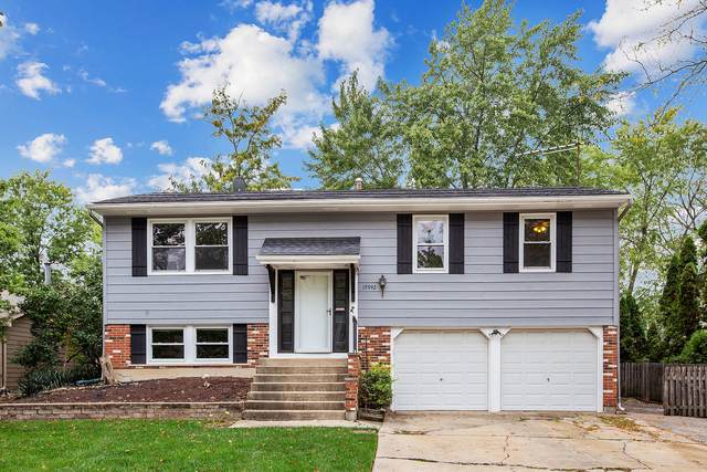 19942 S Rosewood Drive, Frankfort, IL 60423 (MLS #11244201) :: Littlefield Group