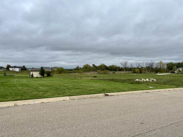 910 Courtney Lane, Marengo, IL 60152 (MLS #11244253) :: The Wexler Group at Keller Williams Preferred Realty