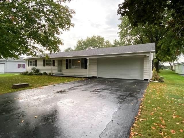 141 Terry Ellen Lane, New Lenox, IL 60451 (MLS #11244322) :: RE/MAX IMPACT