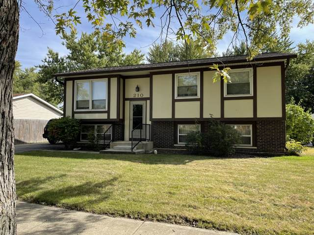 210 Butternut Drive, Bolingbrook, IL 60440 (MLS #11244379) :: The Wexler Group at Keller Williams Preferred Realty