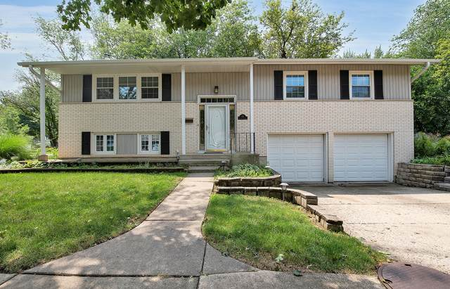 116 S Elizabeth Avenue, Palatine, IL 60074 (MLS #11244442) :: John Lyons Real Estate