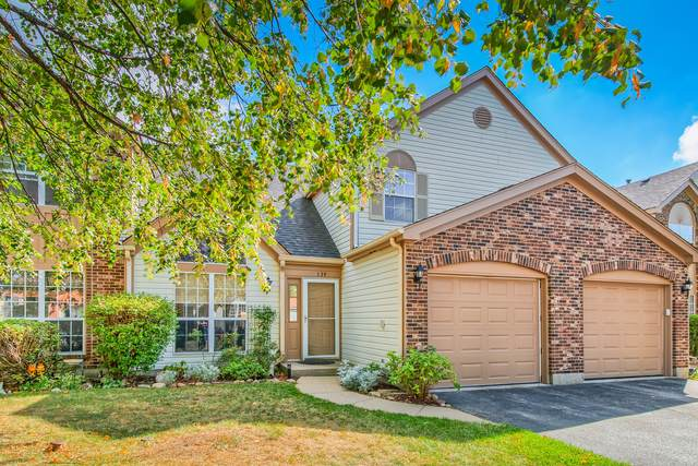 139 Heritage Court, Gurnee, IL 60031 (MLS #11244515) :: John Lyons Real Estate