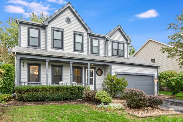 395 Cambridge Drive, Grayslake, IL 60030 (MLS #11244624) :: Littlefield Group