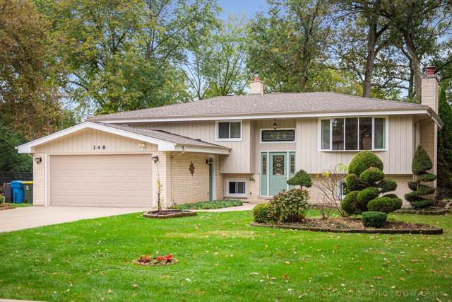 348 Hiawatha Trail, Wood Dale, IL 60191 (MLS #11244721) :: Rossi and Taylor Realty Group