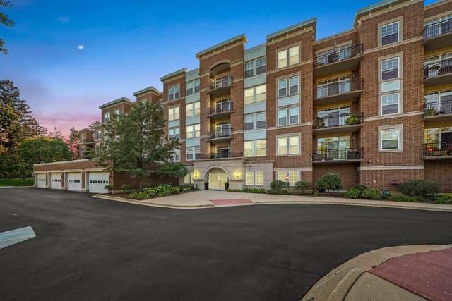 455 W Wood Street #213, Palatine, IL 60067 (MLS #11244815) :: Littlefield Group