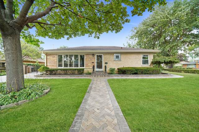 624 Babetta Avenue, Park Ridge, IL 60068 (MLS #11244816) :: Rossi and Taylor Realty Group