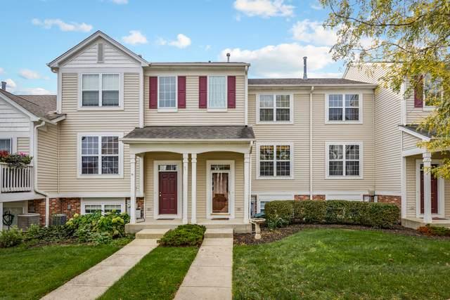 317 Terra Springs Circle #317, Volo, IL 60020 (MLS #11244846) :: John Lyons Real Estate