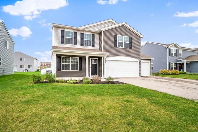 446 S Stone Brook Drive, Romeoville, IL 60446 (MLS #11244851) :: Suburban Life Realty