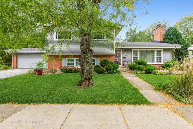 954 Elm Street, Flossmoor, IL 60422 (MLS #11244978) :: Littlefield Group