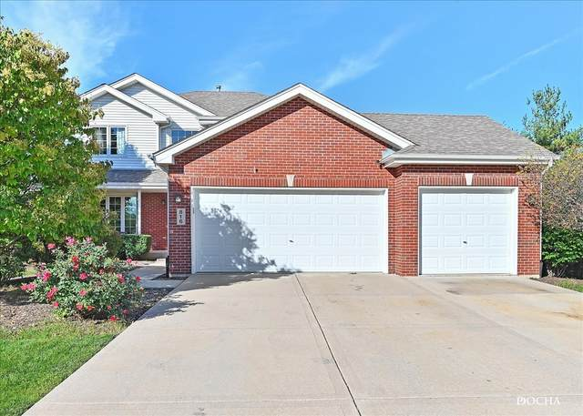 816 Edgewater Drive, Minooka, IL 60447 (MLS #11245031) :: The Wexler Group at Keller Williams Preferred Realty