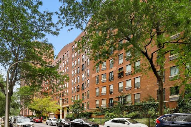 711 W Gordon Terrace #308, Chicago, IL 60613 (MLS #11245159) :: Touchstone Group