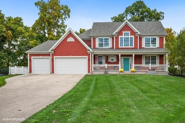 113 Frances Drive, Grayslake, IL 60030 (MLS #11245208) :: Littlefield Group