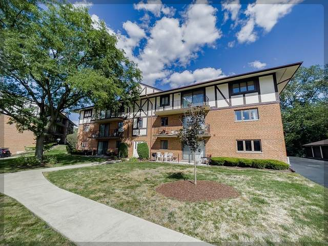 10965 S 84th Avenue 3C, Palos Hills, IL 60465 (MLS #11245354) :: The Wexler Group at Keller Williams Preferred Realty