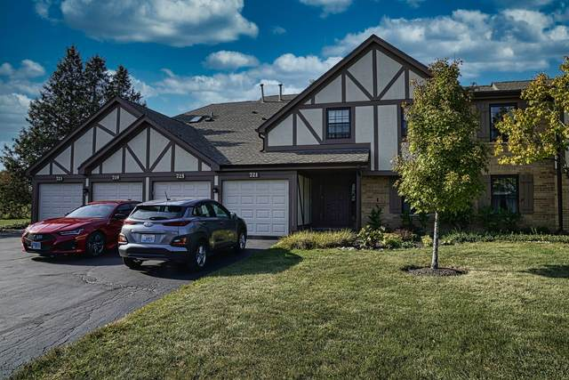 725 Elizabeth Drive 24-D-L, Wood Dale, IL 60191 (MLS #11245356) :: The Wexler Group at Keller Williams Preferred Realty