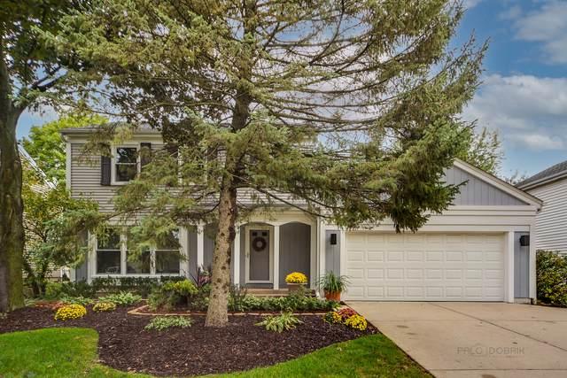 17 Montgomery Lane, Vernon Hills, IL 60061 (MLS #11245395) :: John Lyons Real Estate