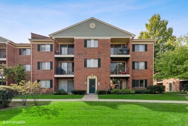 1516 N River West Court 1A, Mount Prospect, IL 60056 (MLS #11245403) :: John Lyons Real Estate
