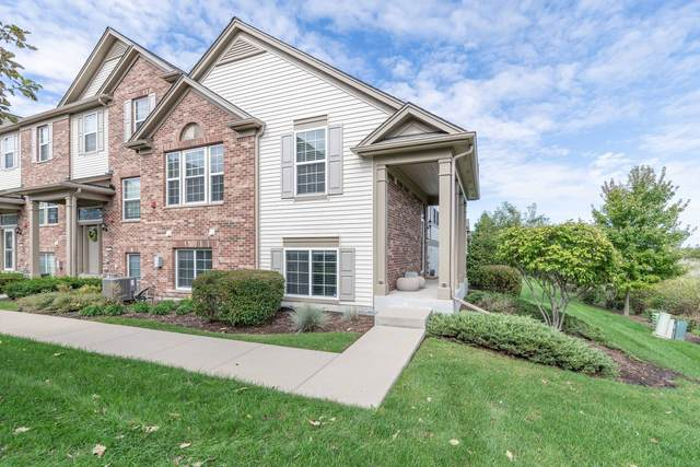 288 Devoe Drive, Oswego, IL 60543 (MLS #11245620) :: Jacqui Miller Homes