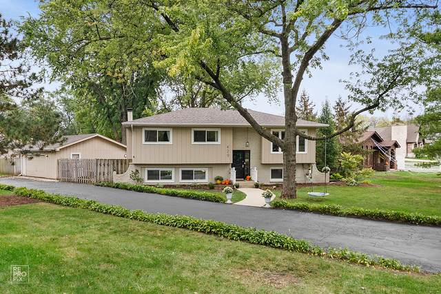 429 N Wilmette Avenue, Westmont, IL 60559 (MLS #11245627) :: Rossi and Taylor Realty Group