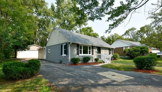 54 Mionske Drive, Lake Zurich, IL 60047 (MLS #11245692) :: Helen Oliveri Real Estate