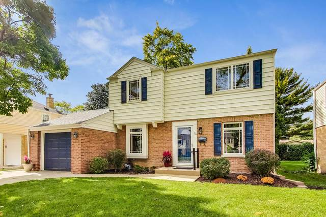 726 S Mitchell Avenue, Arlington Heights, IL 60005 (MLS #11245713) :: The Wexler Group at Keller Williams Preferred Realty