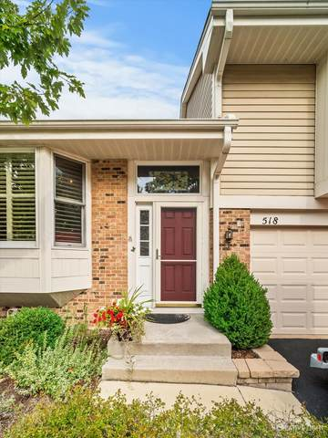 518 River Front Circle, Naperville, IL 60540 (MLS #11245919) :: Littlefield Group