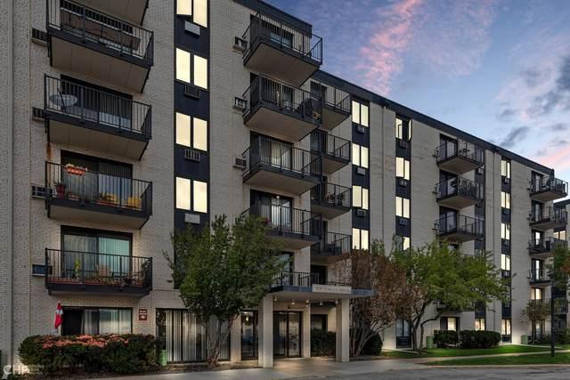 9128 W Terrace Drive 3I, Niles, IL 60714 (MLS #11246053) :: Littlefield Group