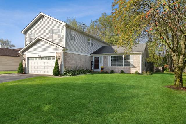 900 Prairie Drive, Algonquin, IL 60102 (MLS #11246063) :: The Wexler Group at Keller Williams Preferred Realty