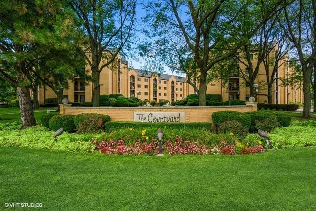 7410 W Lawrence Avenue #420, Harwood Heights, IL 60706 (MLS #11246184) :: Rossi and Taylor Realty Group