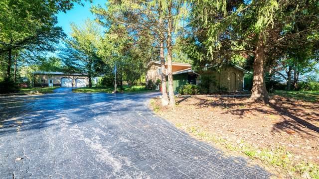 18852 S Parker Road, Mokena, IL 60448 (MLS #11246197) :: RE/MAX IMPACT