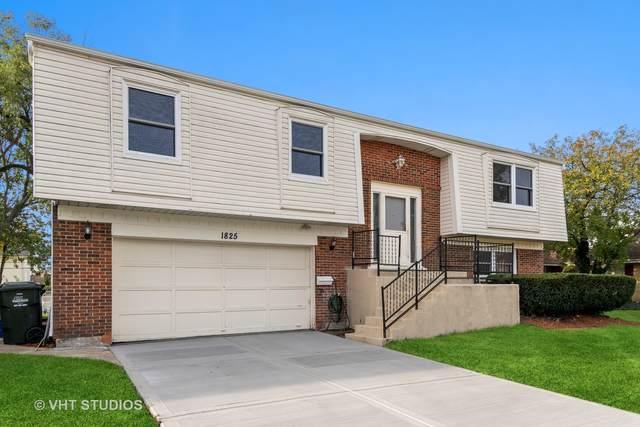 1825 W Thornwood Lane, Mount Prospect, IL 60056 (MLS #11246207) :: John Lyons Real Estate