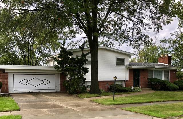 232 Laura Lane, Chicago Heights, IL 60411 (MLS #11246233) :: John Lyons Real Estate