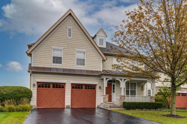 20431 N Joshua Court, Deer Park, IL 60010 (MLS #11246423) :: John Lyons Real Estate