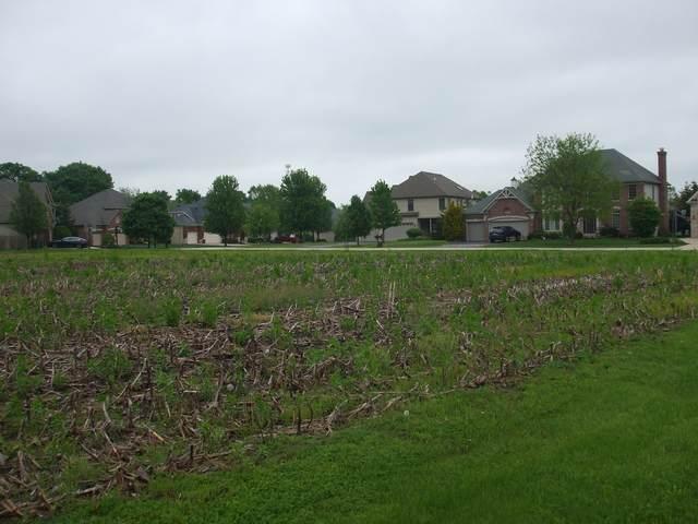 Lot 90 Ellis Johnson Lane, St. Charles, IL 60175 (MLS #11246501) :: The Wexler Group at Keller Williams Preferred Realty