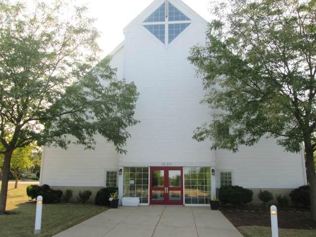 0N377 N Mill Creek Drive, Geneva, IL 60134 (MLS #11246518) :: Janet Jurich