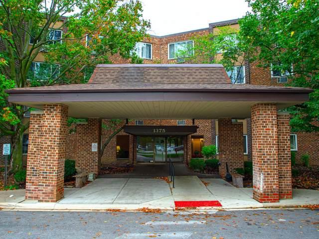 1375 Rebecca Drive #118, Hoffman Estates, IL 60169 (MLS #11246631) :: John Lyons Real Estate