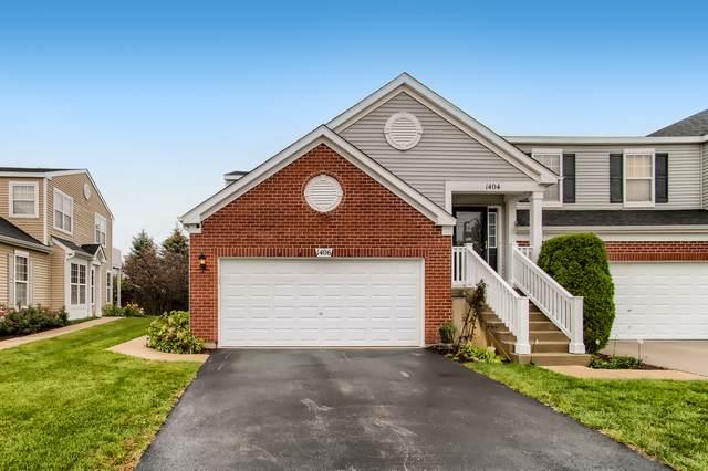 1406 Westhampton Drive, Plainfield, IL 60586 (MLS #11246819) :: Littlefield Group