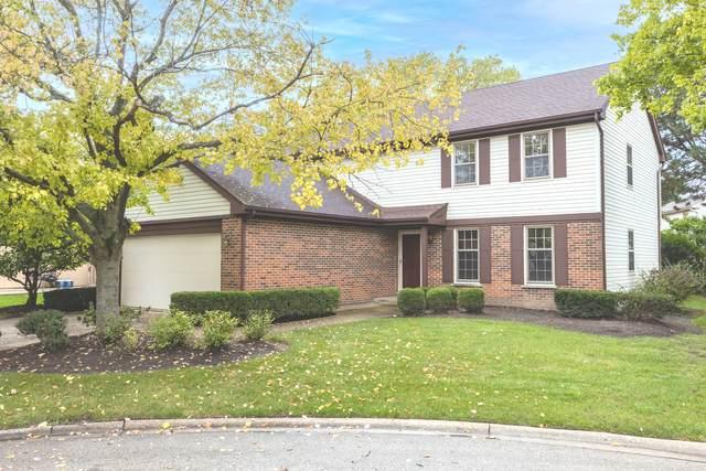 910 Lee Court, Buffalo Grove, IL 60089 (MLS #11246858) :: Charles Rutenberg Realty