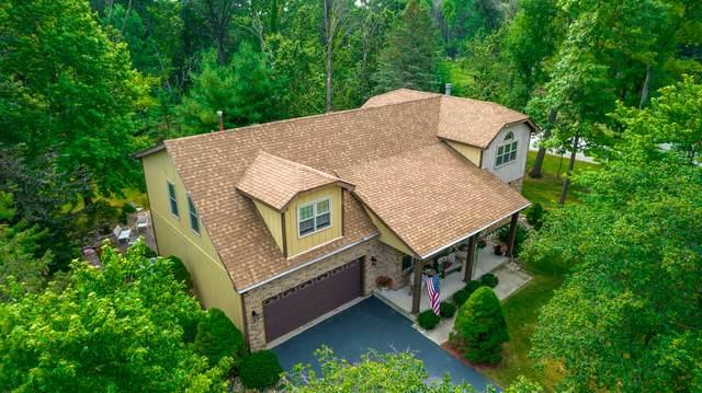 24253 S Shady Oaks Trail, Crete, IL 60417 (MLS #11246880) :: John Lyons Real Estate