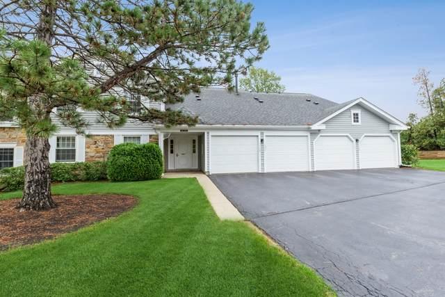 1125 Auburn Lane #1125, Buffalo Grove, IL 60089 (MLS #11246953) :: Charles Rutenberg Realty